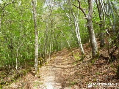 Cañones Ebro, Alto Campoo, Brañosera,Valderredible; excursiones turismo las excursiones abril viaj